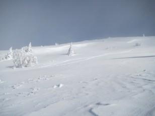 登山道から見る尾根ルート