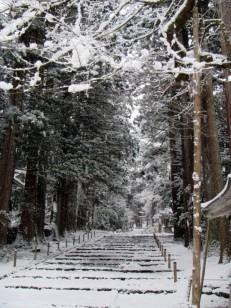 雪の平泉寺白山神社参道