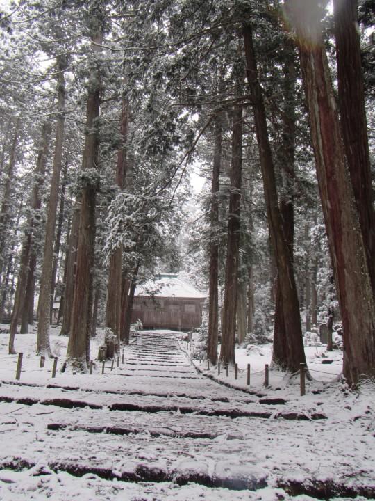 雪の平泉寺白山神社