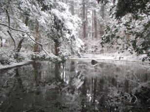 平泉寺白山神社 雪の御手洗池