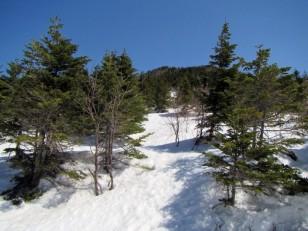 雪が増える