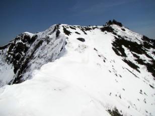 権現岳 雪の頂上稜線