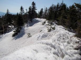 西岳の稜線