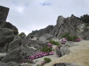 砂礫の稜線は異星的