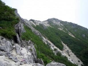 灌木と岩の稜線