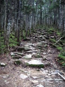 苺平への登りの石畳