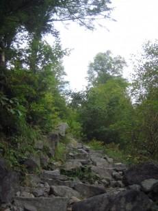 石階段の登山道