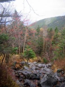 蓼科山荘への登山道