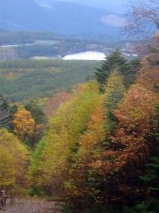 紅葉進む登山道