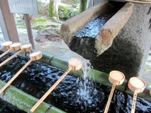 豊富な手水の水