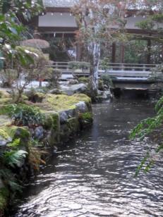 流れる水に囲まれた上賀茂神社