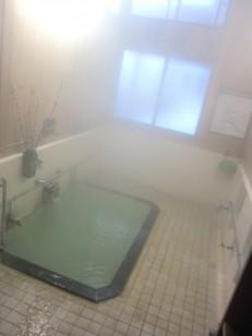 浴槽も綺麗な真湯