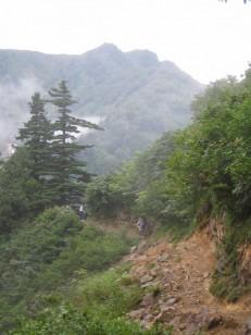 山が見えてきた登山道