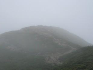 霧が濃く薄暗い