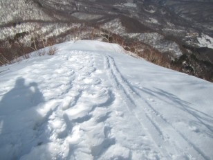 山スキーで上がった方がいるようです