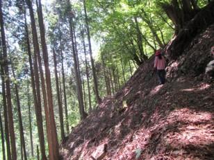赤土の片斜面を行く