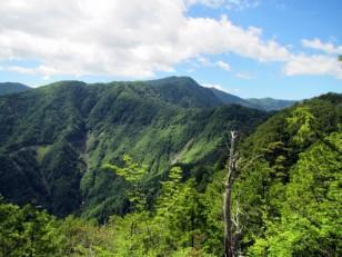 イキイキした緑の山が続く