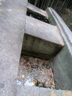 穴に溜まった水量の違いに注目