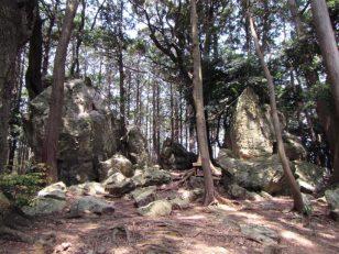 丘の森に巨石がゴロゴロ