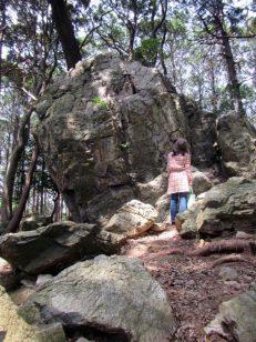4mぐらいある岩