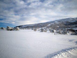 伸びやかにひろがる雪原