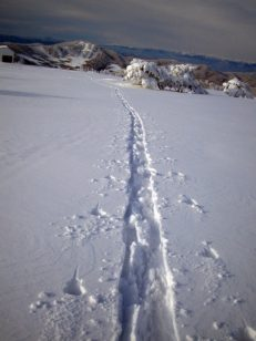 新雪に刻むハイクアップ